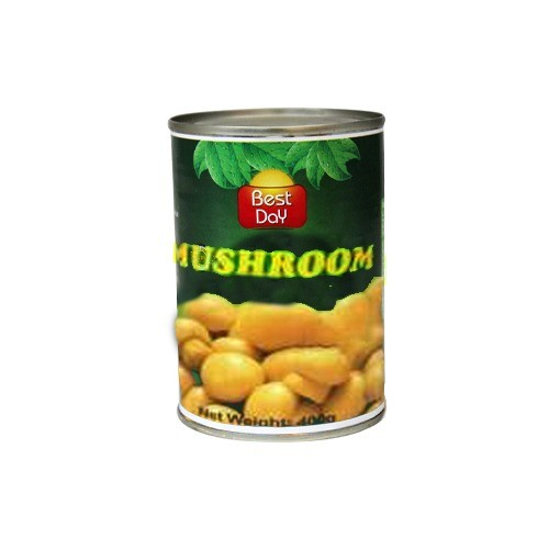 BEST DAY MUSHROOM - PIECES AND STEMS (400 GMS)